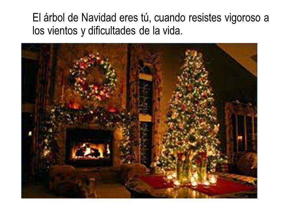 El árbol de Navidad eres tú, cuando resistes vigoroso a los vientos y dificultades de la vida.