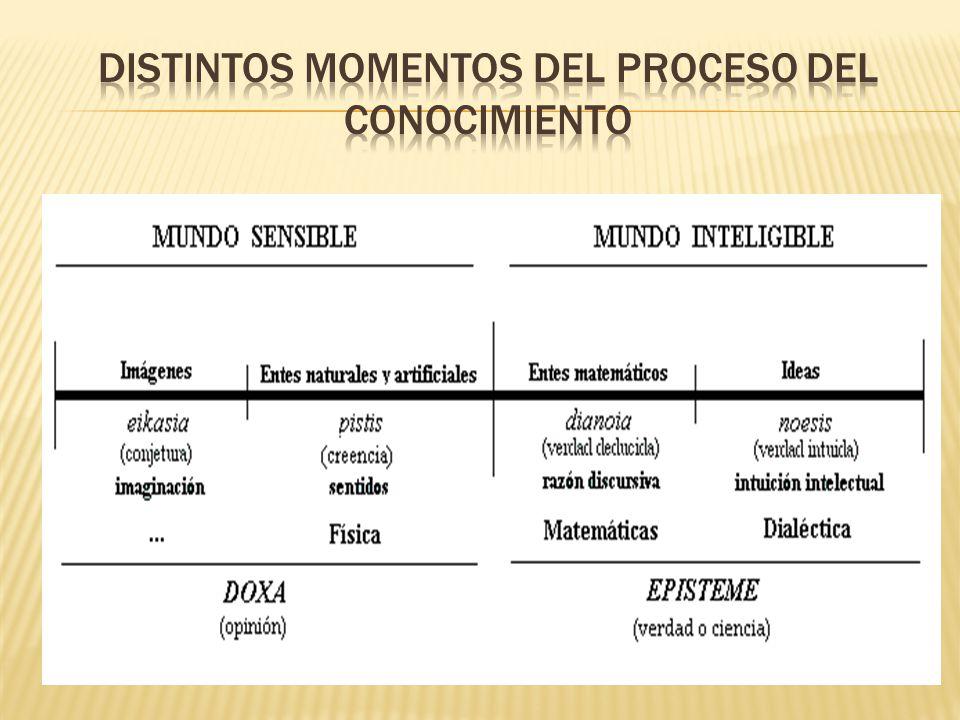 Distintos momentos del proceso del conocimiento
