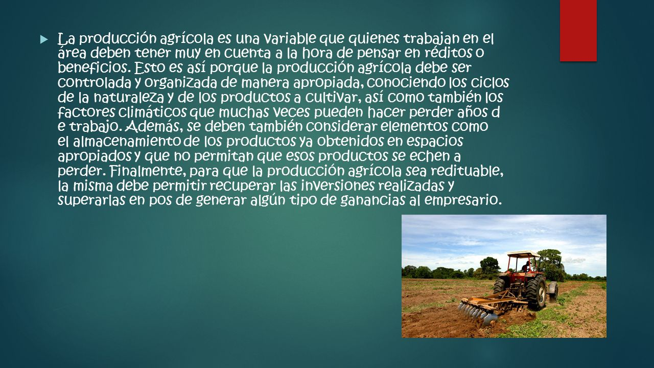 La producción agrícola es una variable que quienes trabajan en el área deben tener muy en cuenta a la hora de pensar en réditos o beneficios.