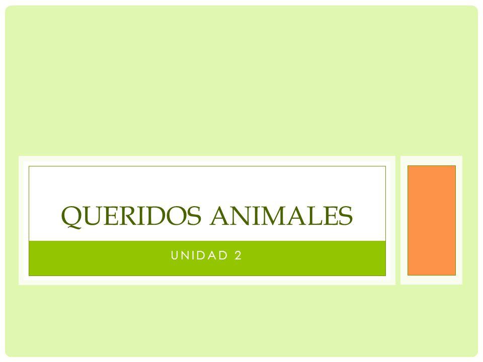 Queridos animales Unidad 2