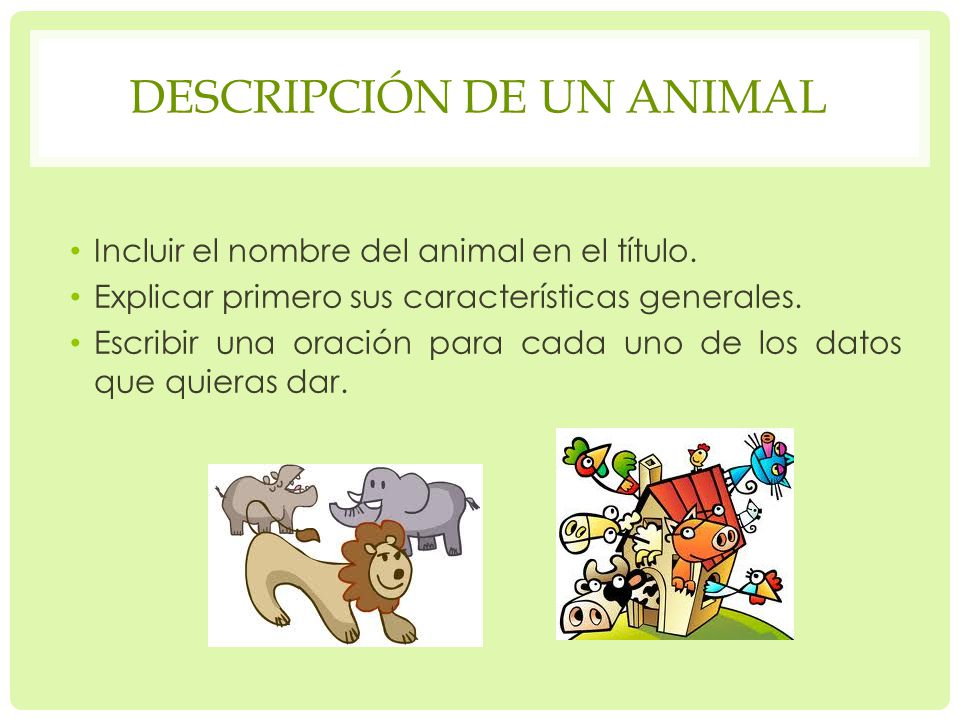Descripción de un animal