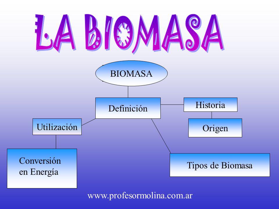 La biomasa biomasa biomasa historia definici n utilizaci n for Origen y definicion de oficina