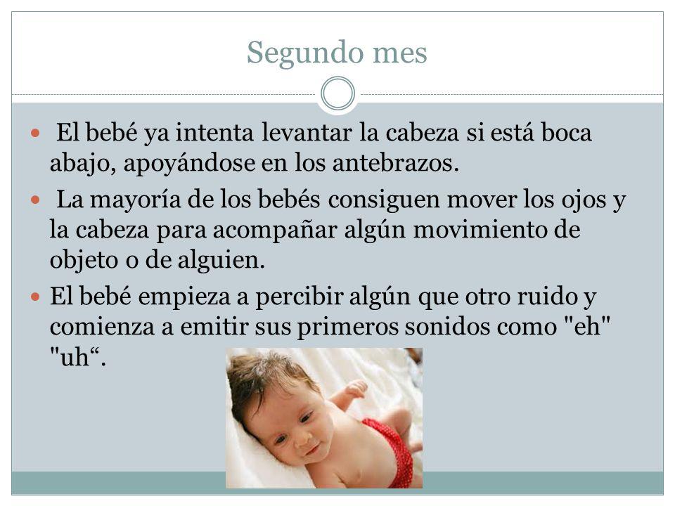 Segundo mes El bebé ya intenta levantar la cabeza si está boca abajo, apoyándose en los antebrazos.