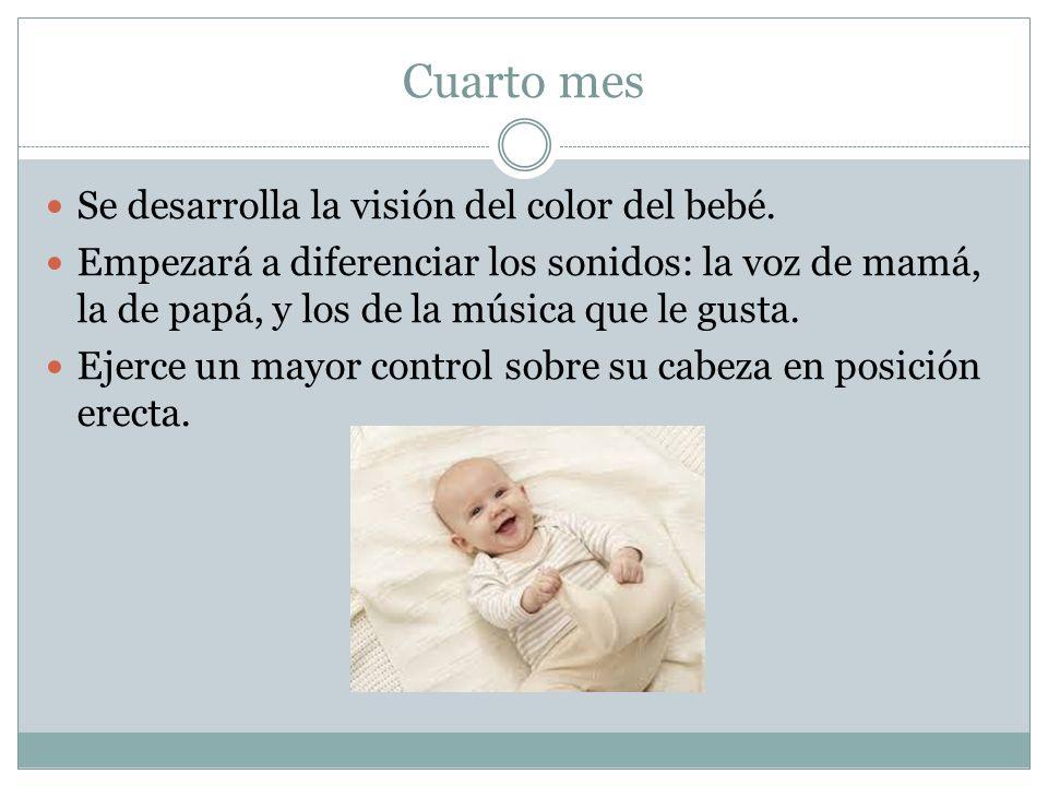 Cuarto mes Se desarrolla la visión del color del bebé.