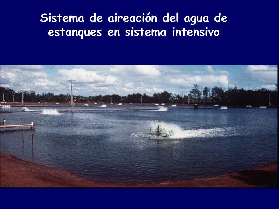 Universidad nacional del santa ppt descargar - Estanques de agua ...