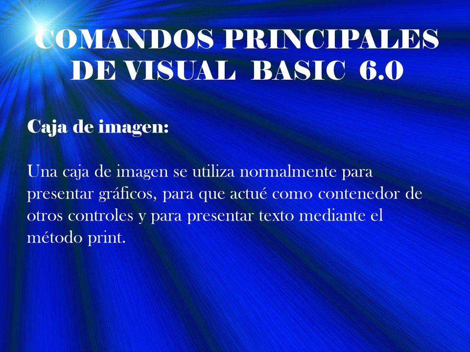 COMANDOS PRINCIPALES DE VISUAL BASIC 6.0