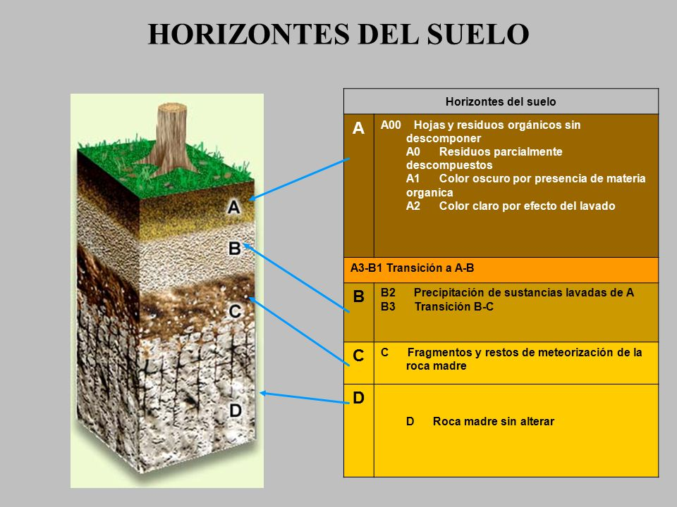 Concepto de suelo el concepto de suelo es utilizado para for Significado de suelo