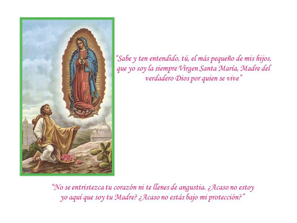 Sabe y ten entendido, tú, el más pequeño de mis hijos, que yo soy la siempre Virgen Santa María, Madre del verdadero Dios por quien se vive