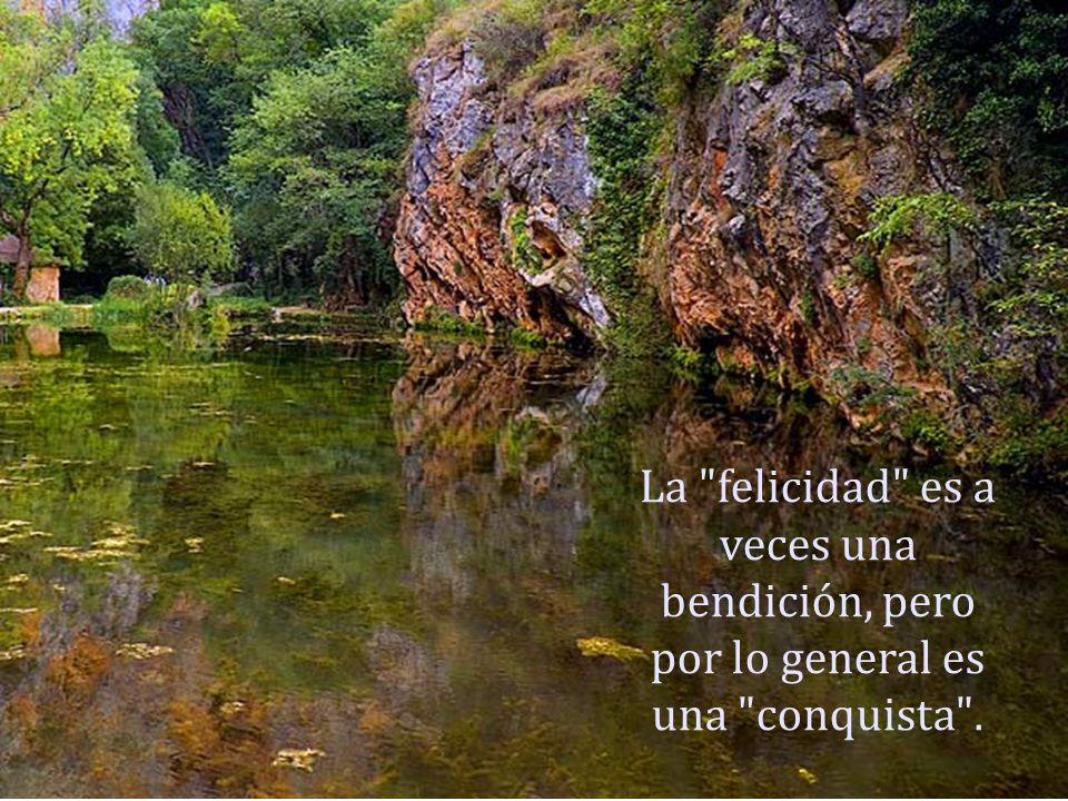 La felicidad es a veces una bendición, pero por lo general es una conquista .