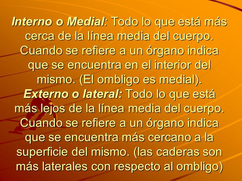 Interno o Medial: Todo lo que está más cerca de la línea media del cuerpo.