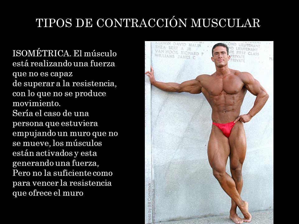 TIPOS DE CONTRACCIÓN MUSCULAR