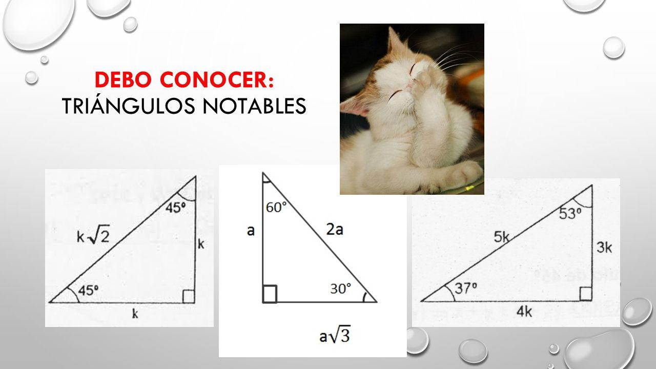 Debo conocer: Triángulos Notables