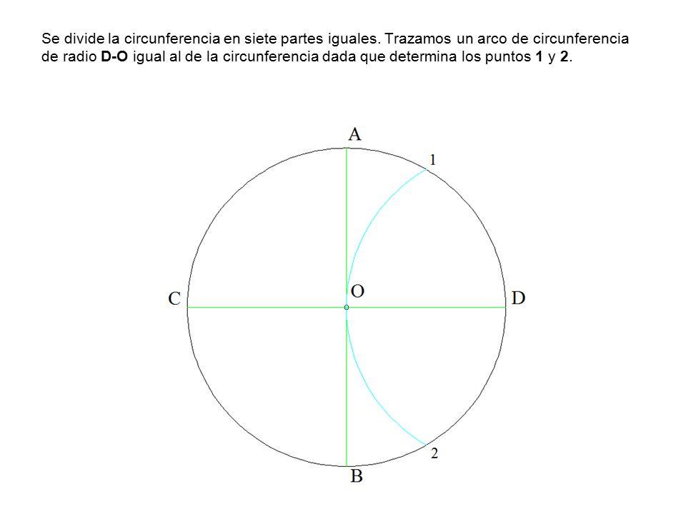 Se divide la circunferencia en siete partes iguales