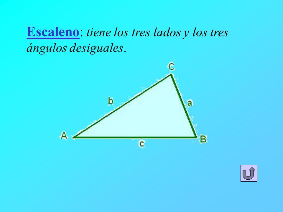 Escaleno: tiene los tres lados y los tres ángulos desiguales.