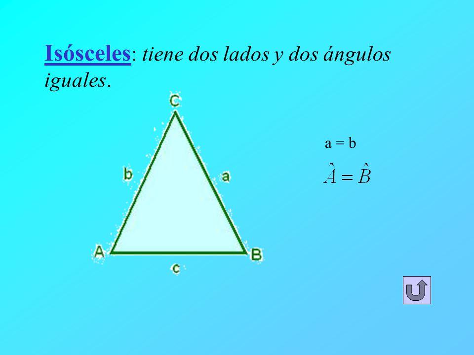 Isósceles: tiene dos lados y dos ángulos iguales.