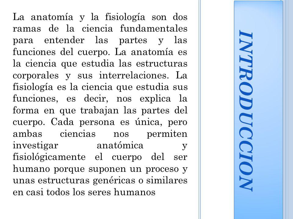 Excelente La Anatomía Y La Fisiología De Introducción Galería ...