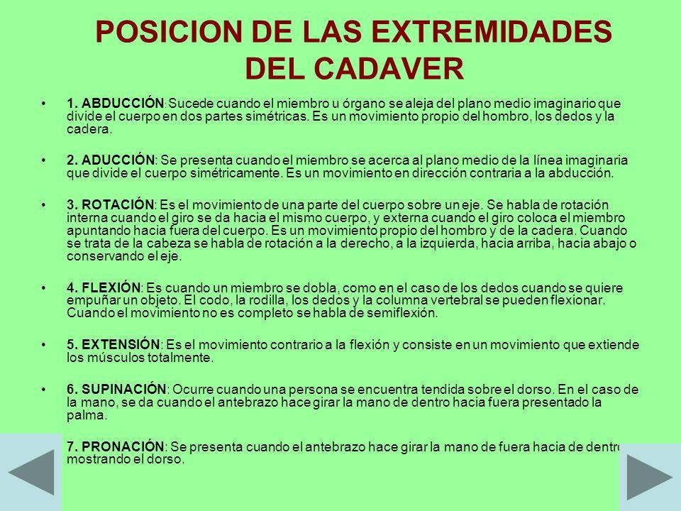 POSICION DE LAS EXTREMIDADES DEL CADAVER