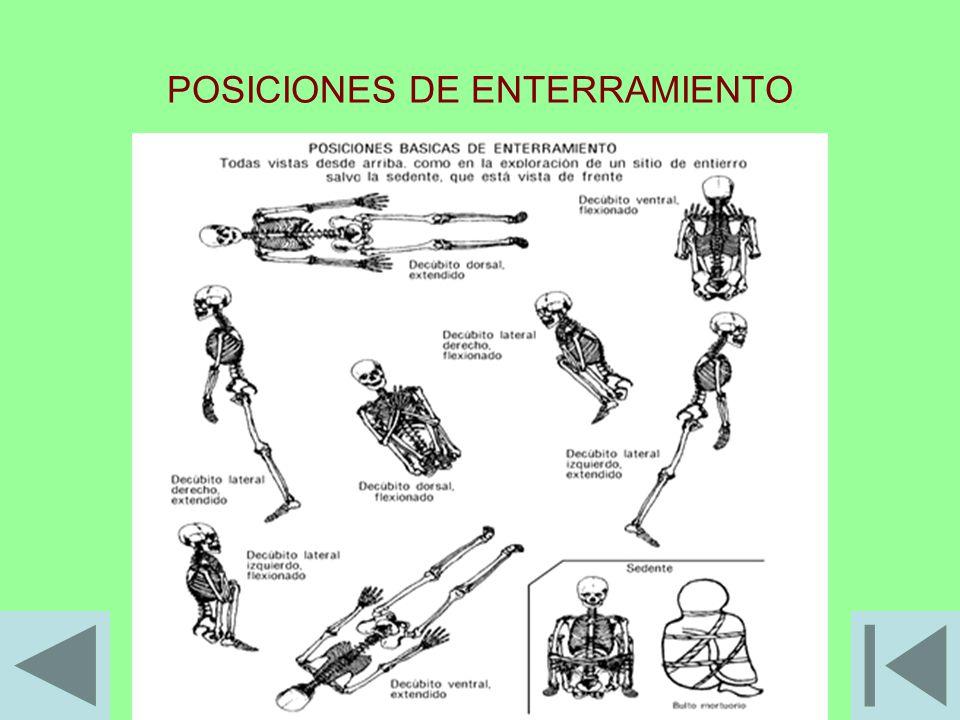 POSICIONES DE ENTERRAMIENTO