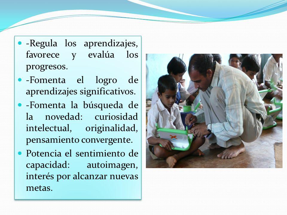-Regula los aprendizajes, favorece y evalúa los progresos.