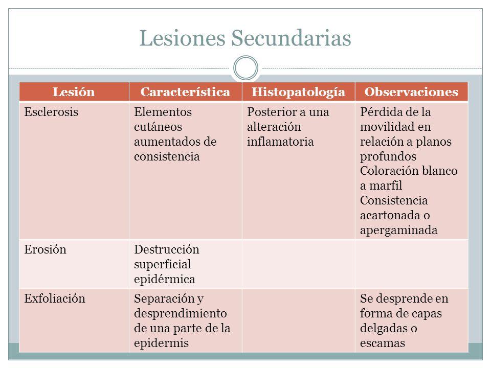 Lesiones Secundarias Lesión Característica Histopatología