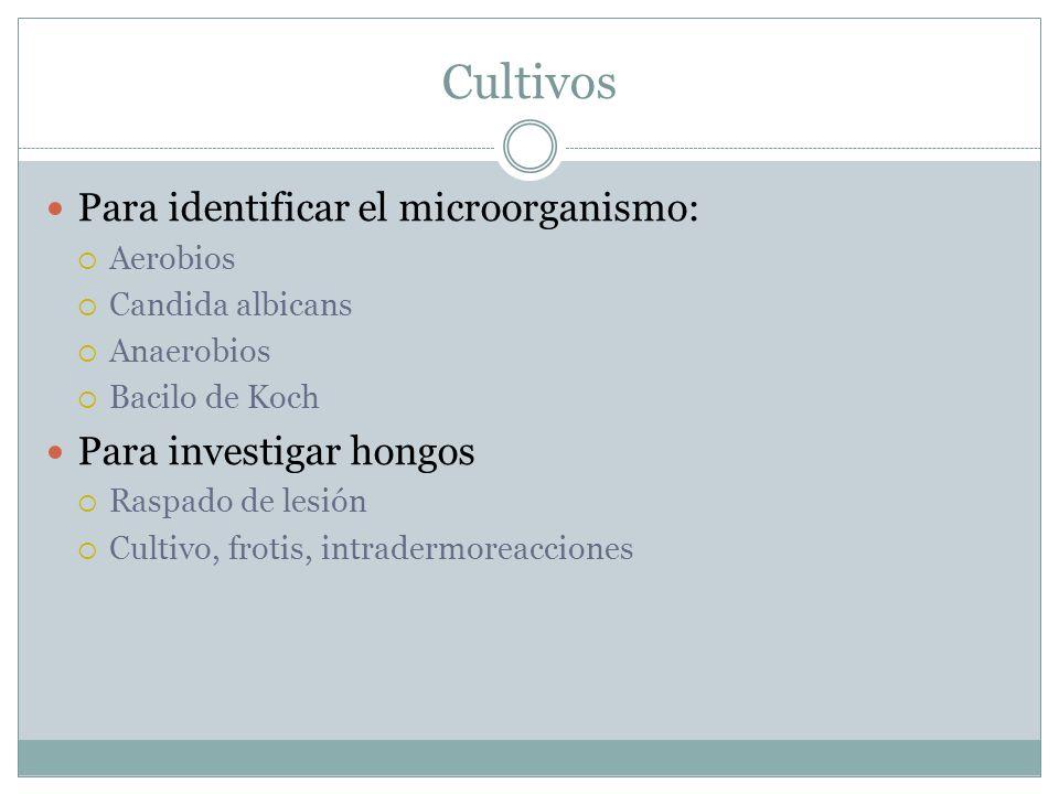 Cultivos Para identificar el microorganismo: Para investigar hongos