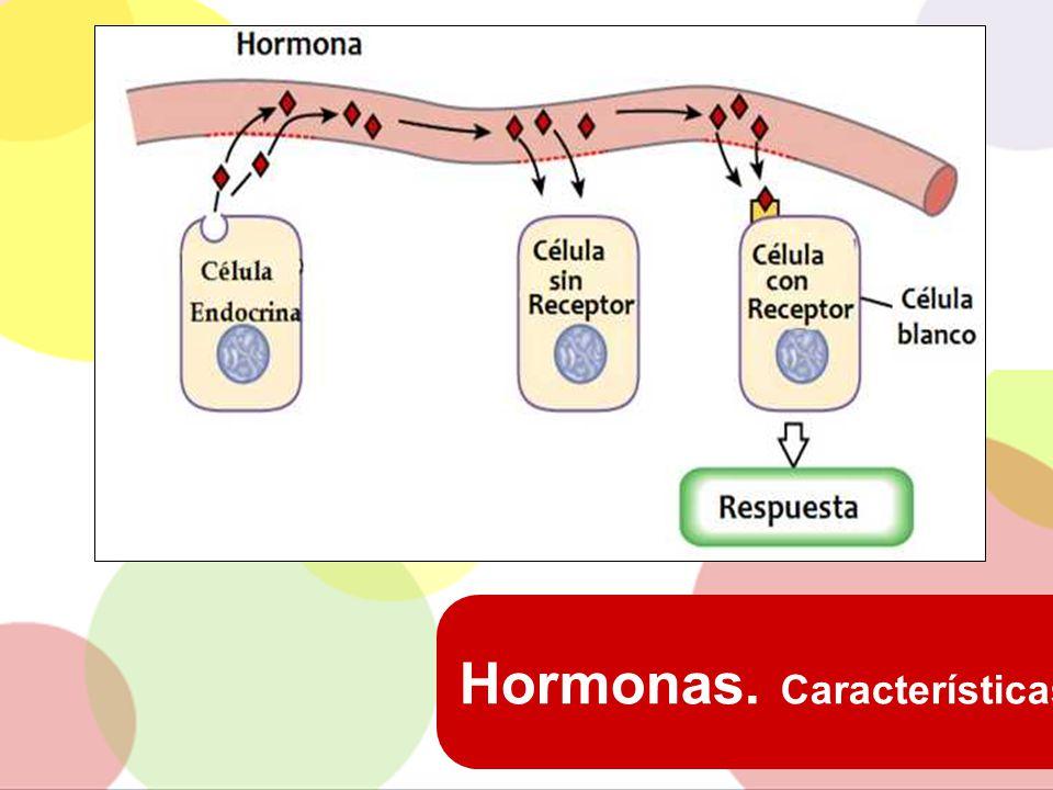 Hormonas. Características