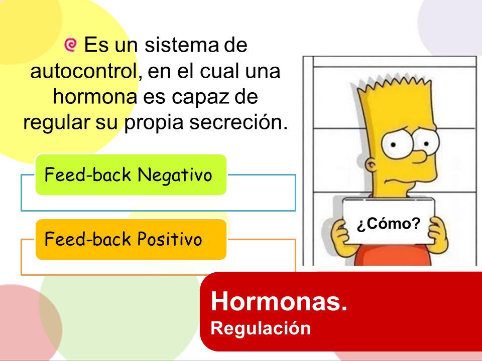 Es un sistema de autocontrol, en el cual una hormona es capaz de regular su propia secreción.