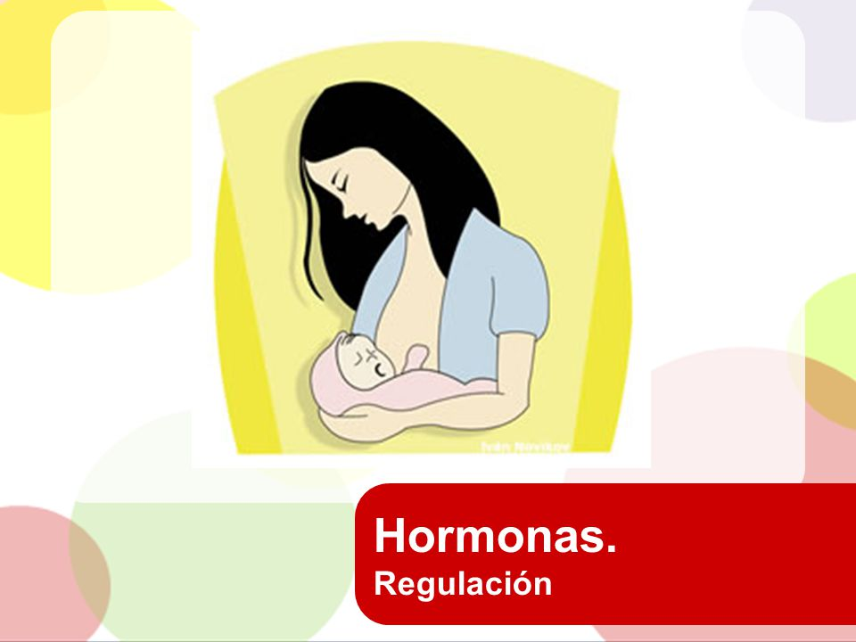 Hormonas. Regulación