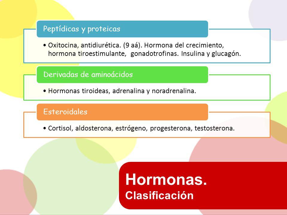 Hormonas. Clasificación Peptídicas y proteicas