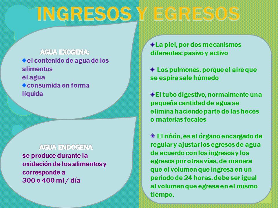 INGRESOS Y EGRESOS AGUA EXOGENA: