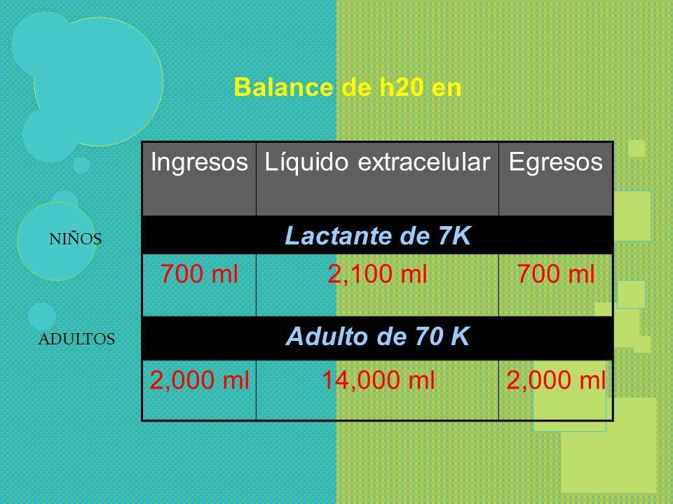 Balance de h20 en Lactante de 7K Adulto de 70 K