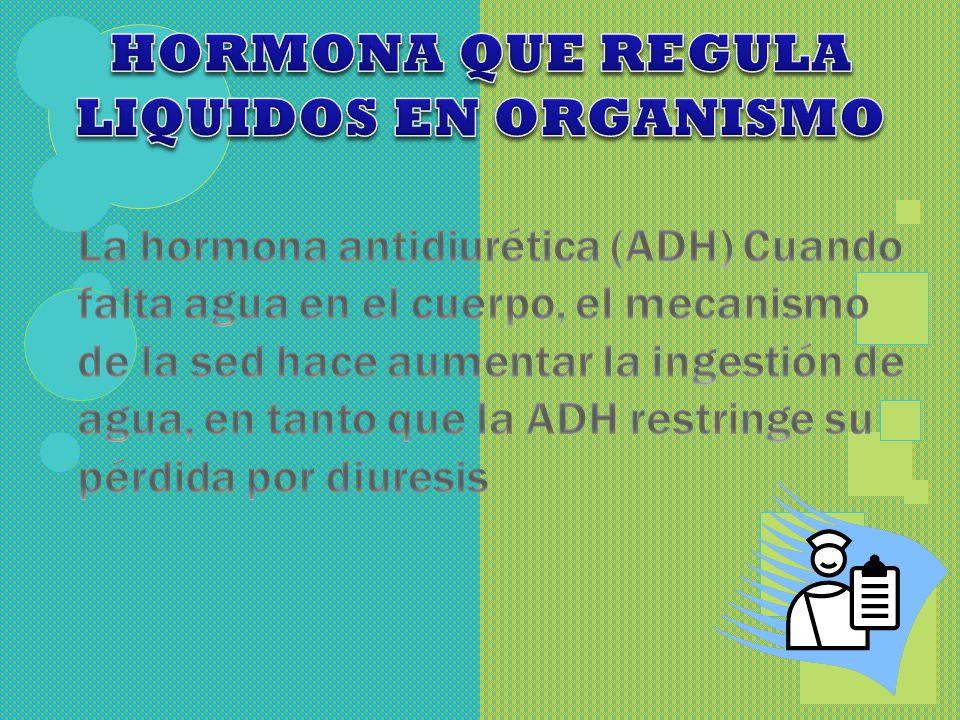 HORMONA QUE REGULA LIQUIDOS EN ORGANISMO