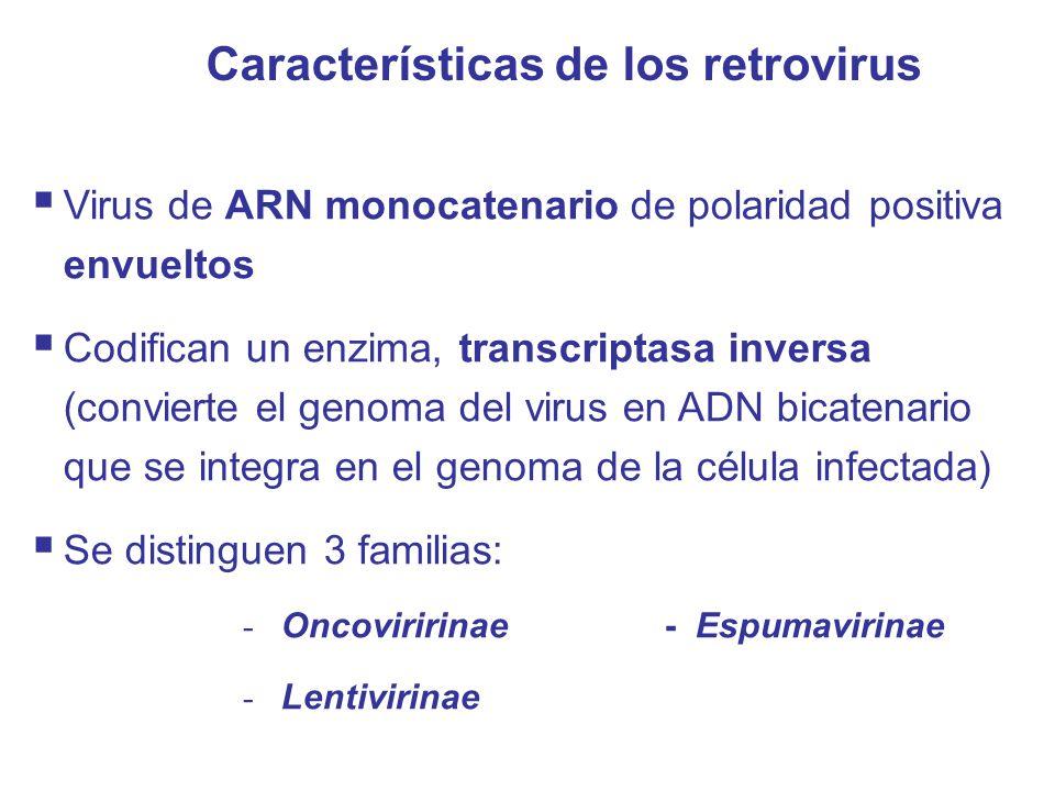 Características de los retrovirus