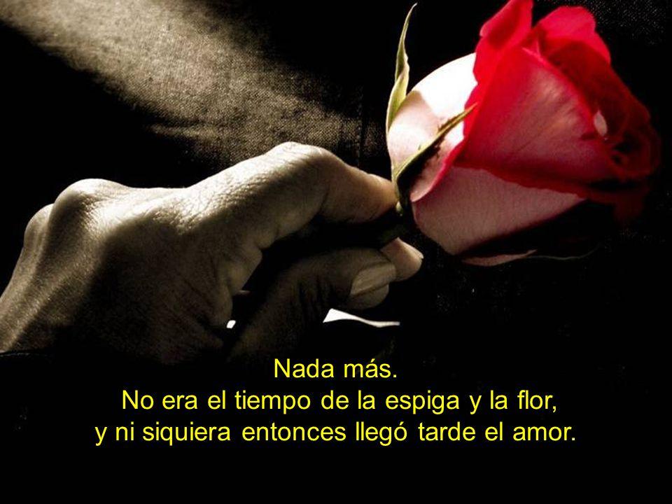 Nada más. No era el tiempo de la espiga y la flor, y ni siquiera entonces llegó tarde el amor.