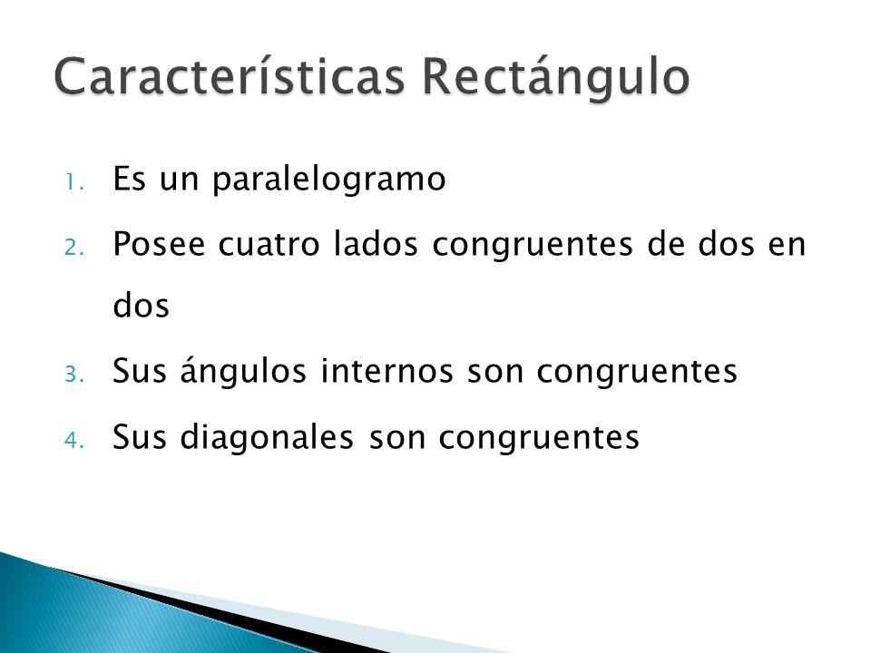 Características Rectángulo