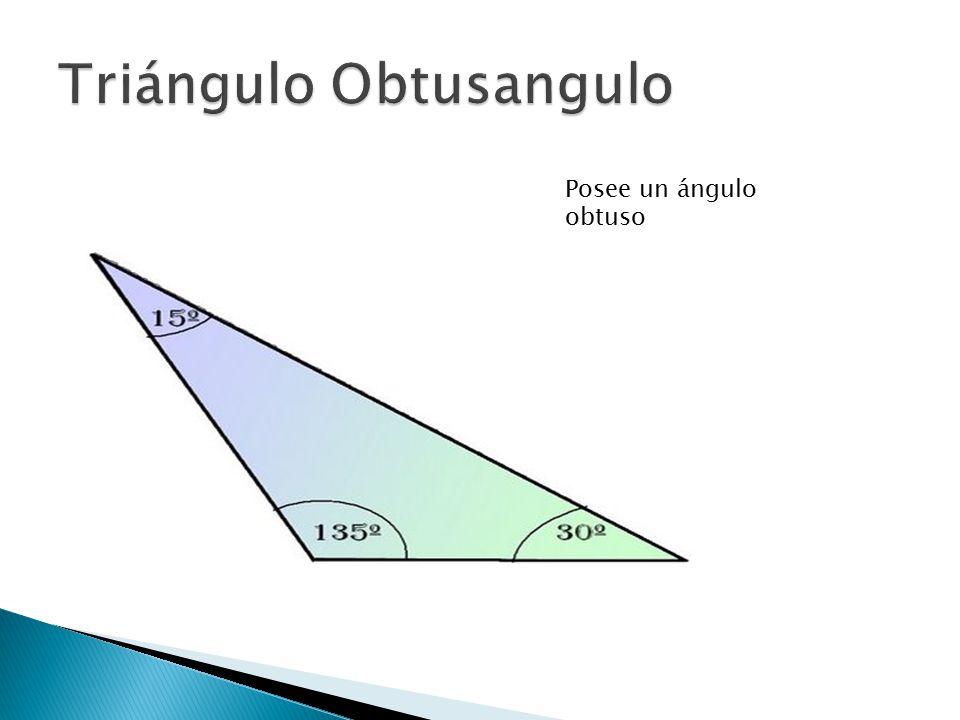 Triángulo Obtusangulo