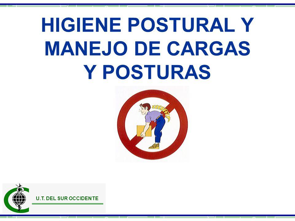 HIGIENE POSTURAL Y MANEJO DE CARGAS Y POSTURAS