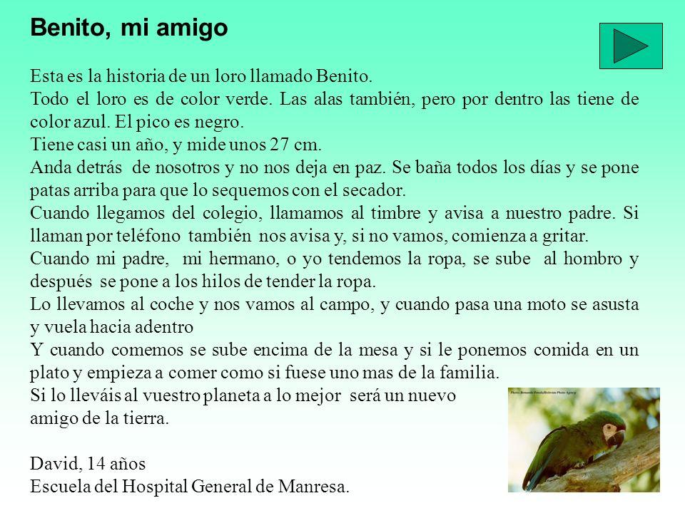 Benito, mi amigo Esta es la historia de un loro llamado Benito.