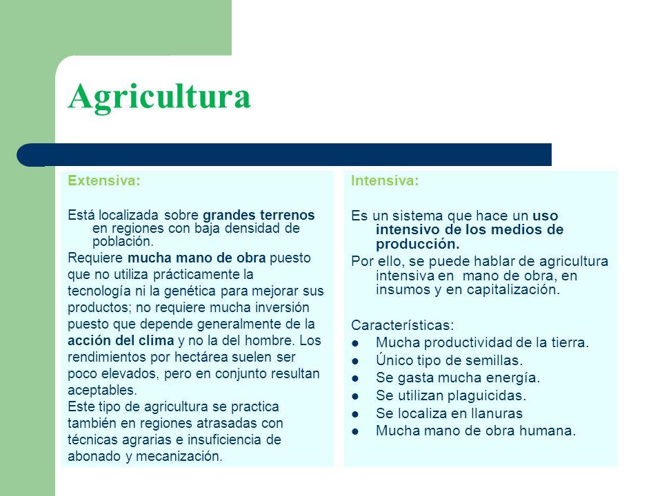 Agricultura Extensiva: Intensiva: