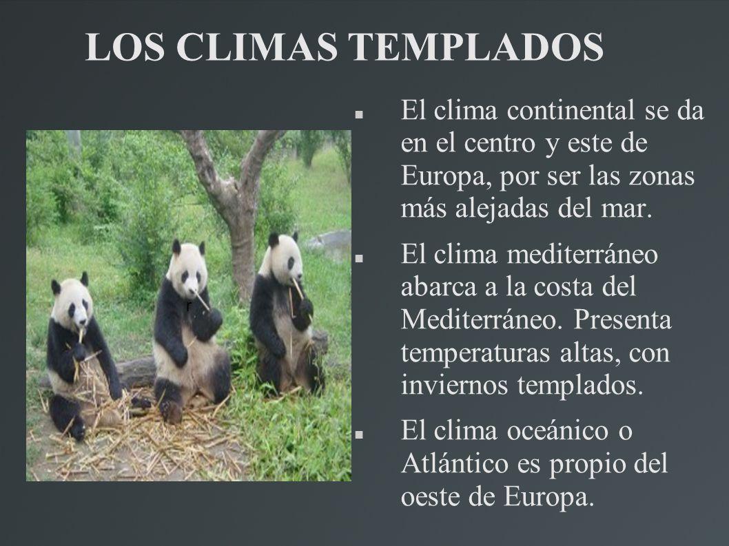 Geograf a de europa realizado por elisa fern ndez sabio for Temperatura frigo da 1 a 7