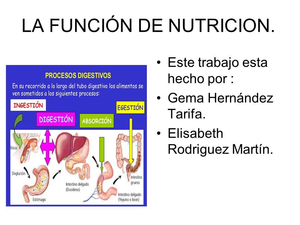 LA FUNCIÓN DE NUTRICION.