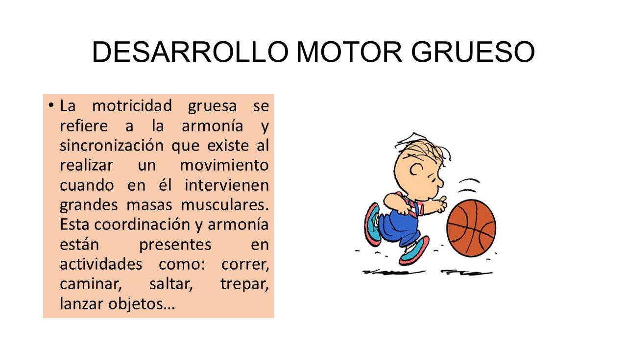 DESARROLLO MOTOR GRUESO
