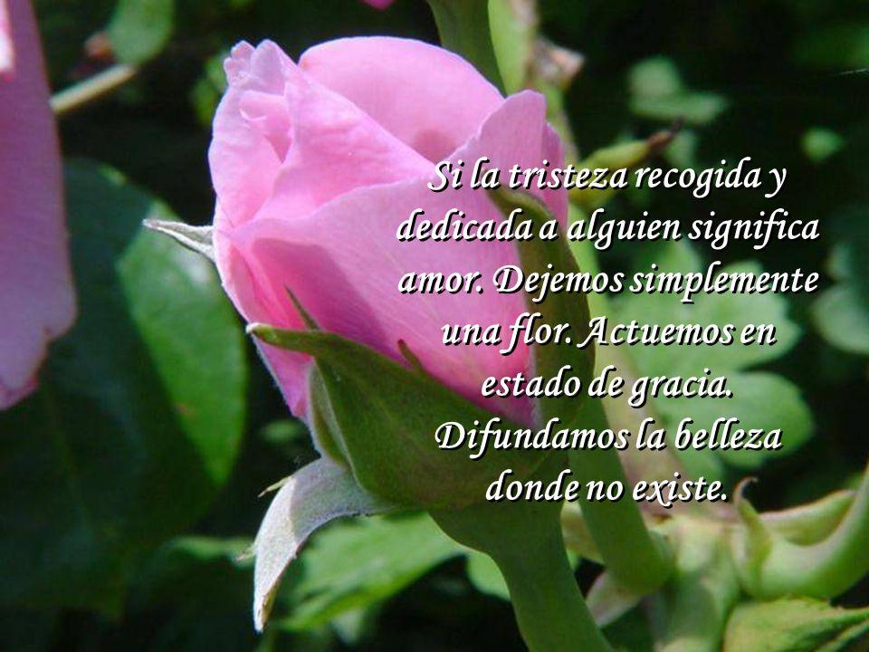 Si la tristeza recogida y dedicada a alguien significa amor