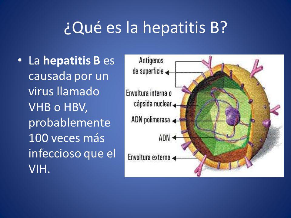 ¿Qué es la hepatitis B.