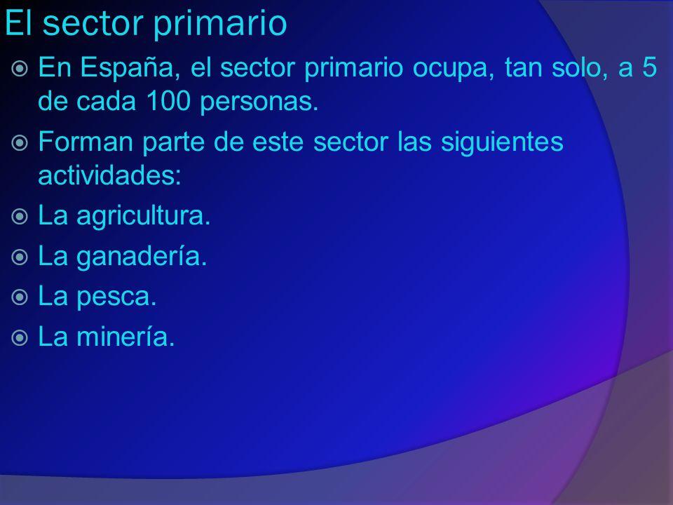 El sector primario En España, el sector primario ocupa, tan solo, a 5 de cada 100 personas. Forman parte de este sector las siguientes actividades: