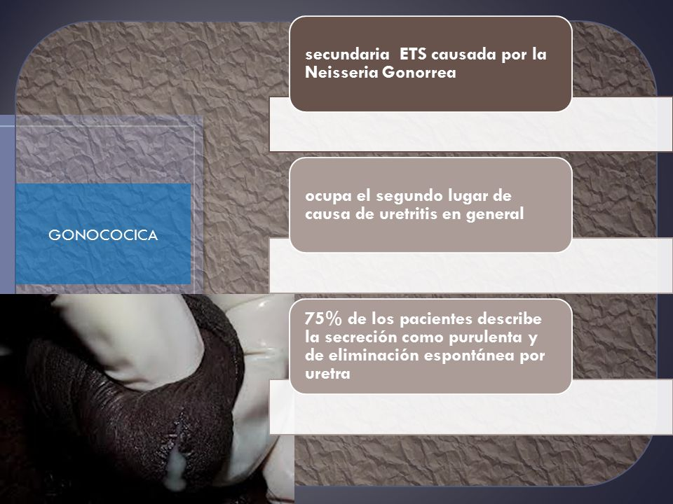 secundaria ETS causada por la Neisseria Gonorrea