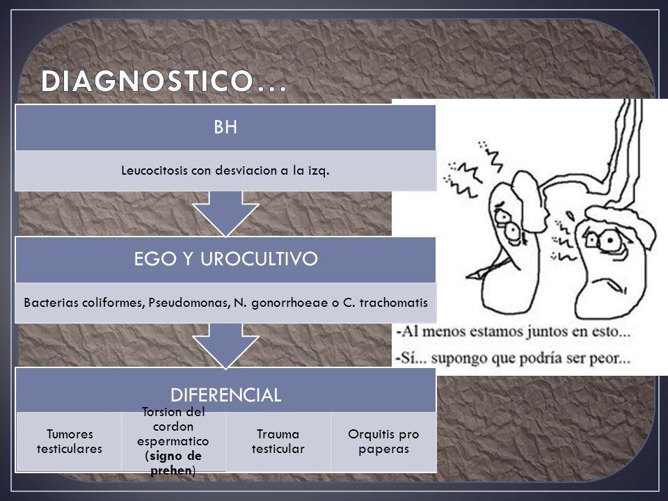 DIAGNOSTICO… Leucocitosis con desviacion a la izq.