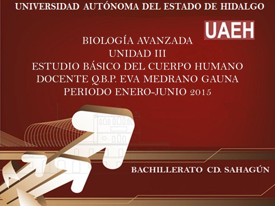 BIOLOGÍA AVANZADA UNIDAD III ESTUDIO BÁSICO DEL CUERPO HUMANO DOCENTE Q.B.P.