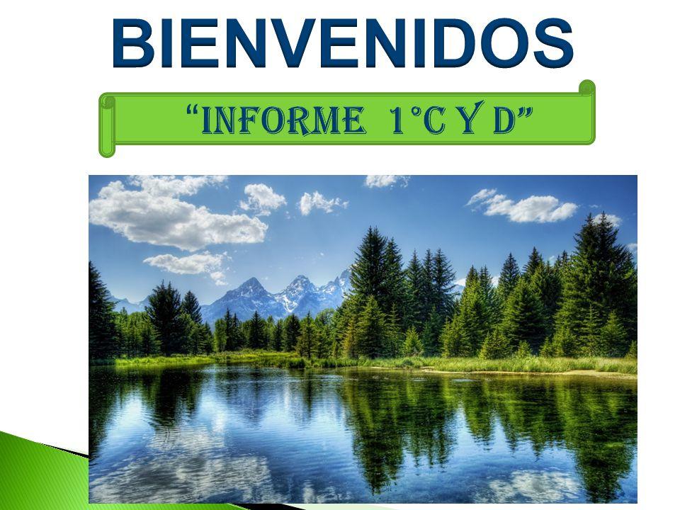 BIENVENIDOS INFORME 1°C Y D