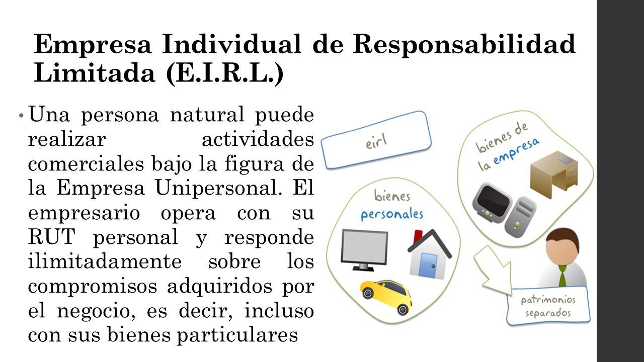 Empresa Individual de Responsabilidad Limitada (E.I.R.L.)